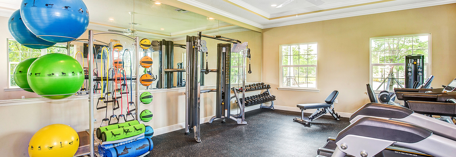 CoralCaye-gym.jpg